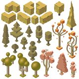 Vector 3d isometric autumn plants, trees, bushes. Vector 3d isometric autumn plants, trees, wilted bushes, firs and pines. Nature objects in fall, environment vector illustration