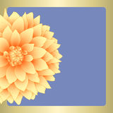 Vector dahlia flower. Royalty Free Stock Image