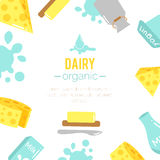Vector dairy illustrations. Stock Photography