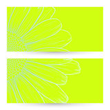 Vector daisies design. Vector illustration with daisies for greeting or invitation card Royalty Free Stock Image
