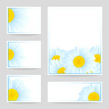 Vector daisies design. Royalty Free Stock Photo