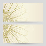 Vector daisies design. Stock Photo