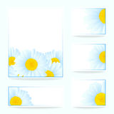 Vector daisies design. Vector set greeting or invitation card with daisies Stock Photo