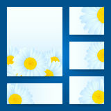 Vector daisies design. Royalty Free Stock Image