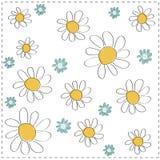 vector Daisy background Stock Photo