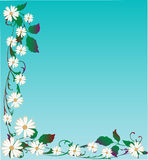 Vector Daisy Background Royalty-vrije Stock Afbeelding