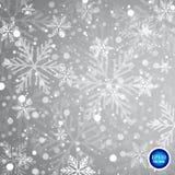Vector dalend geïsoleerd sneeuweffect op transparante achtergrond met vaag bokeh vector illustratie