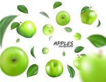 Vector dalende groene appelen op witte achtergrond Het fruit als geheel Realistische 3d Royalty-vrije Stock Afbeelding