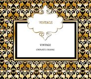 Vector damask pattern and frame Stock Images