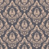 Vector damask seamless pattern background. Classical luxury old fashioned damask ornament, royal victorian seamless Stock Image