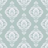 Vector damask seamless pattern background. Classical luxury old fashioned damask ornament, royal victorian seamless Stock Photo