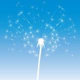 Vector dandelion icon Stock Photography