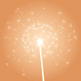 Vector dandelion illustration Royalty Free Stock Photo