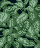 background of spotted plant leaves stock illustration