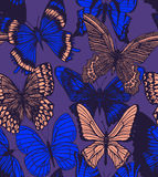 Vector dark colorful background with butterflies Royalty Free Stock Photography