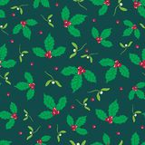 Vector dark green, red holly berry and mistletoe holiday seamless pattern background. Great for winter themed packaging Stock Photos