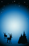 Vector dark winter background Stock Image