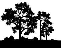 Vector de árboles stock de ilustración