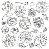 Vector de bloemkrabbels van de illustratiefantasie geplaatst zwart-wit Elementen op witte achtergrond worden ge?soleerd die vector illustratie