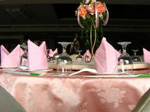 Vector de cena elegante Foto de archivo libre de regalías