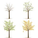 Vector de cuatro árboles de las estaciones ilustración del vector