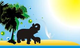 Vector de dos elefantes Foto de archivo libre de regalías