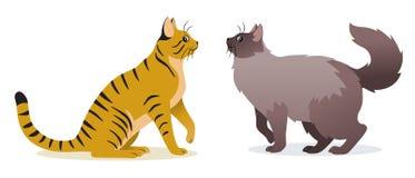 Vector de dos gatos - gato revestido liso del jengibre con la cola larga y gato de pelo largo con la cola mullida larga, animal d imagen de archivo libre de regalías