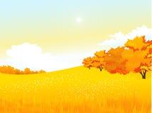 Vector de herfst landelijk landschap met weide en Stock Afbeeldingen