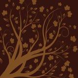 Vector de herfstboom Stock Afbeeldingen