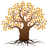 Vector de herfstboom Stock Foto