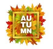 Vector de herfstverkoop met dalend bladerenpatroon Stock Afbeelding