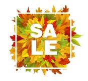 Vector de herfstverkoop met dalend bladerenpatroon Stock Fotografie