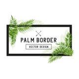 Vector de hoja de palma tropical de la frontera Imagen de archivo