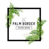 Vector de hoja de palma tropical de la frontera Fotos de archivo libres de regalías