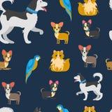 Vector de Kleuren Vlak Naadloos Patroon van beeldverhaalhuisdieren vector illustratie
