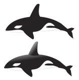 Vector de la ballena Foto de archivo libre de regalías
