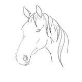 Vector de la cabeza de caballo stock de ilustración