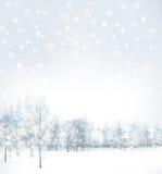 Vector de la escena del invierno con el fondo del bosque Foto de archivo libre de regalías