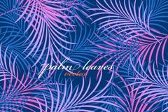 Vector de la escena de los colores de las hojas de palma Fotos de archivo