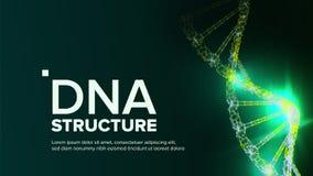 Vector de la estructura de la DNA Hélice abstracta Código futurista Ilustración stock de ilustración