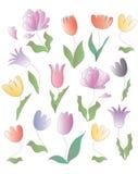 Vector de la flor Fotografía de archivo