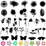 Vector de la flor y de la mariposa Fotografía de archivo libre de regalías