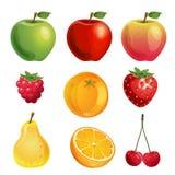 Vector de la fruta del od de la colección libre illustration