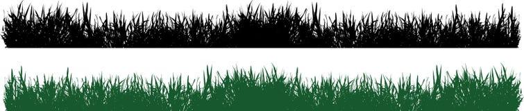 Vector de la hierba Fotos de archivo libres de regalías