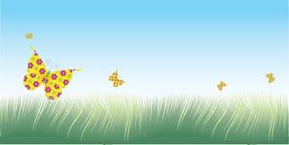 Vector de la hierba y de las mariposas Imagenes de archivo