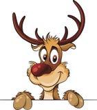 Vector de la historieta de los ciervos comunes Fotos de archivo