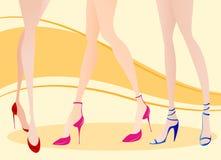 Vector de la ilustración de la pierna de la mujer ilustración del vector