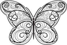 Vector de la mariposa del cordón Imagen de archivo libre de regalías