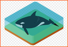 Vector de la orca Fotos de archivo