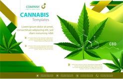 Vector de la planta de marijuana y de las botellas de aceite del c??amo stock de ilustración